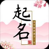 玖安取名起名软件