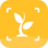 灵通植物app