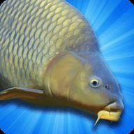鲤鱼钓鱼模拟器